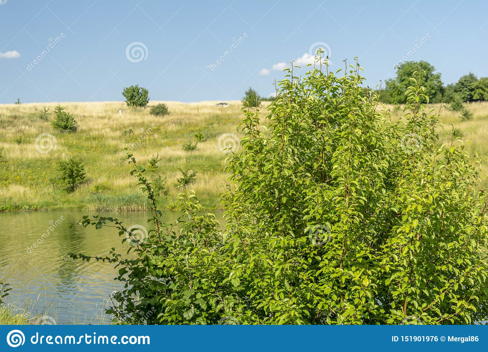 Beautiful view of river, green trees, hills and blue cloudy sky. Summer landscape