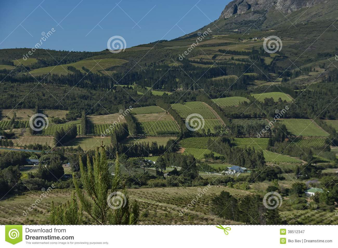 Beautiful view to plantation royalty free stock for Landscaping rocks cape town