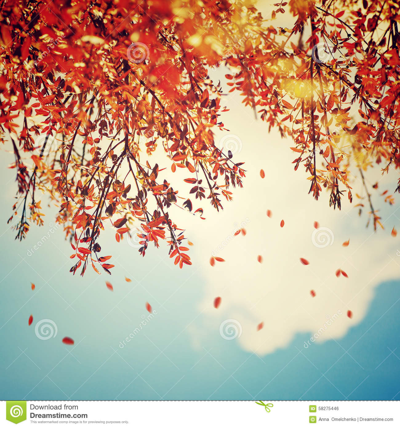 vintage fall backgrounds with - photo #34