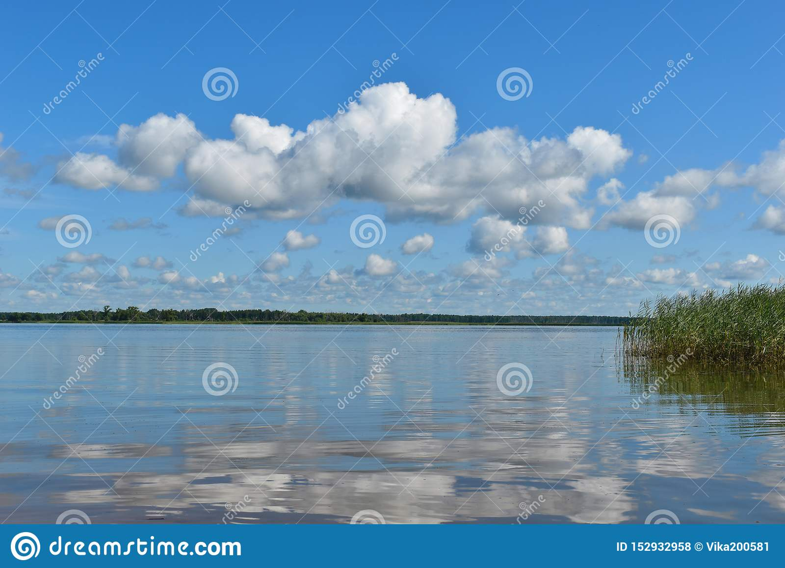 Beautiful water landscape