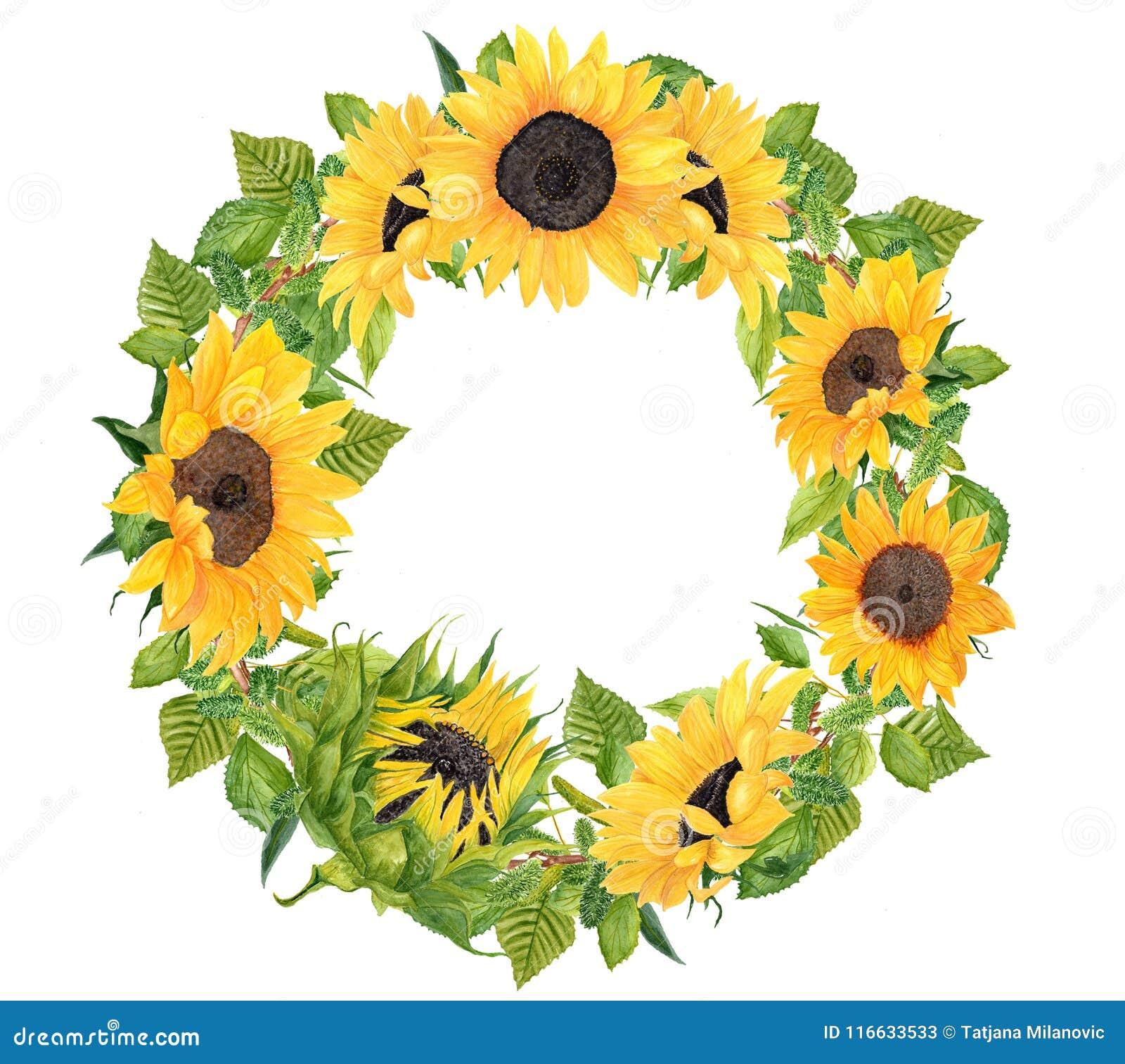 Sunflower Wreath Stock Illustrations 1 059 Sunflower Wreath Stock Illustrations Vectors Clipart Dreamstime