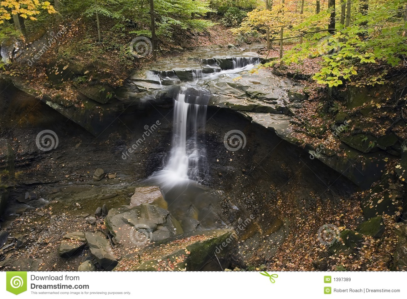 Beautiful waterfall with fallen leaves and colorful trees