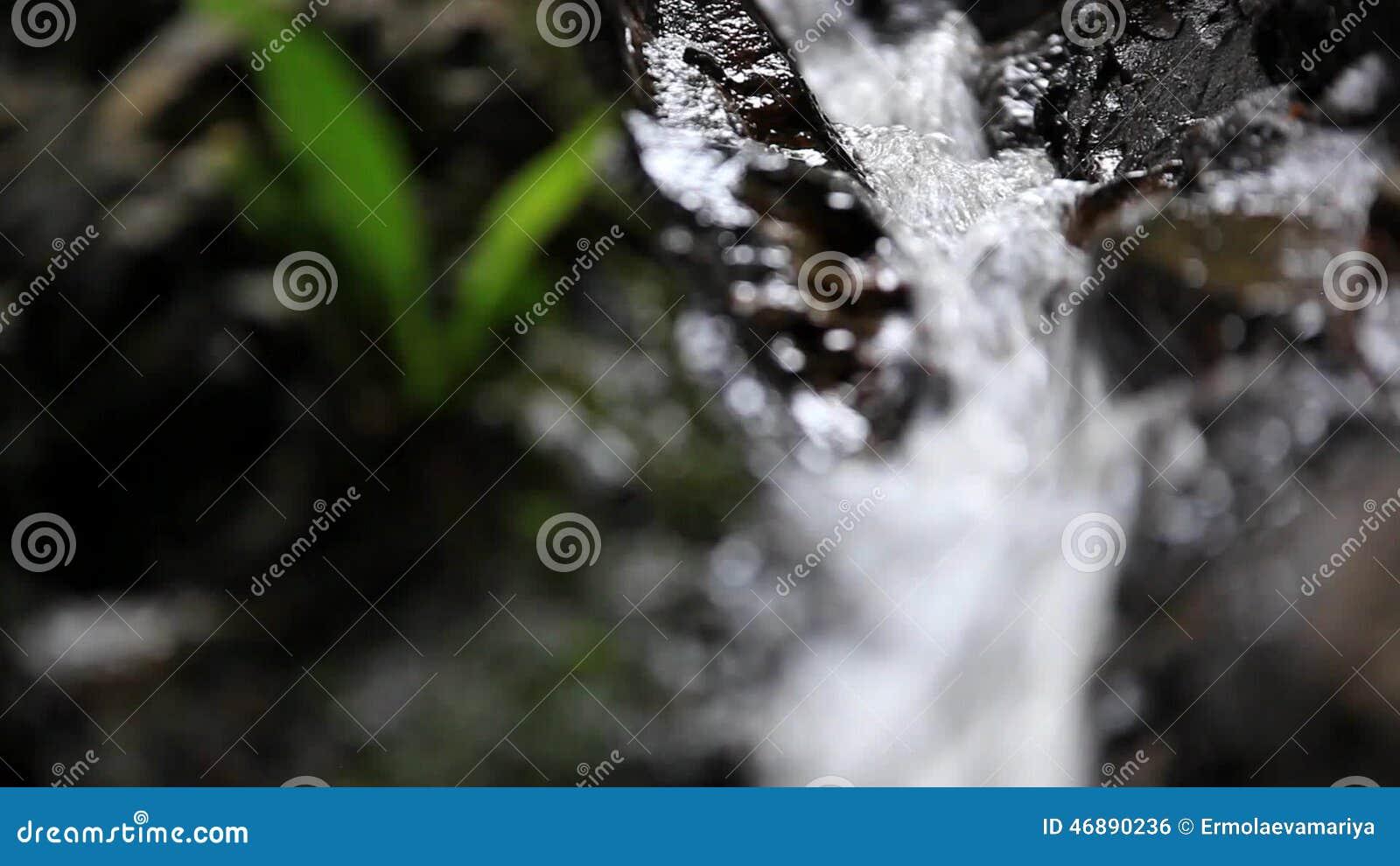schwarze frauen enge muschi
