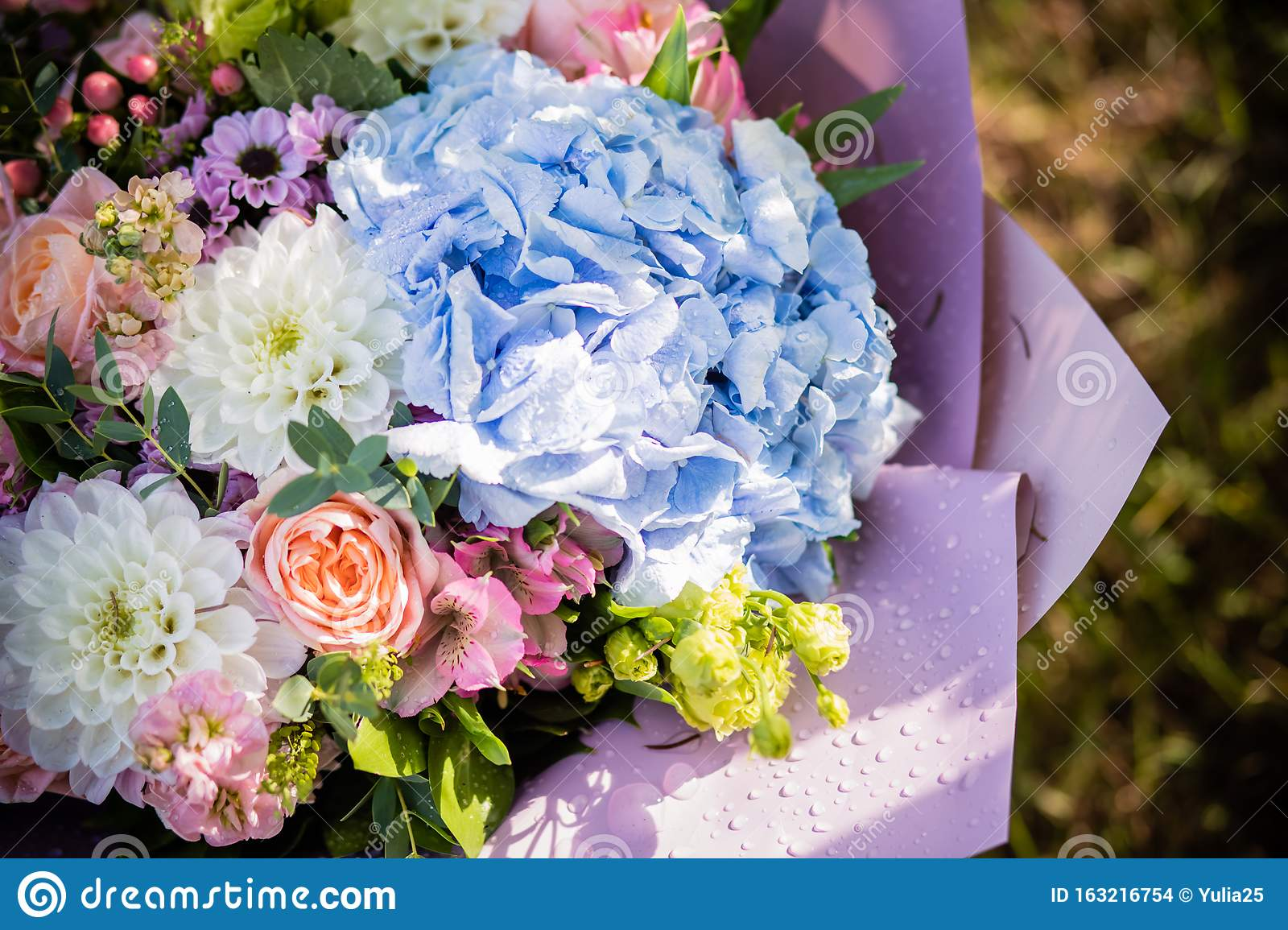 Beautiful Bouquet Of Bride Wedding Flowers Blue Hydrangea Fresh Pink Roses And Alstroemeria Bridal Decoration Fresh Stock Photo Image Of Flower Floral 163216754