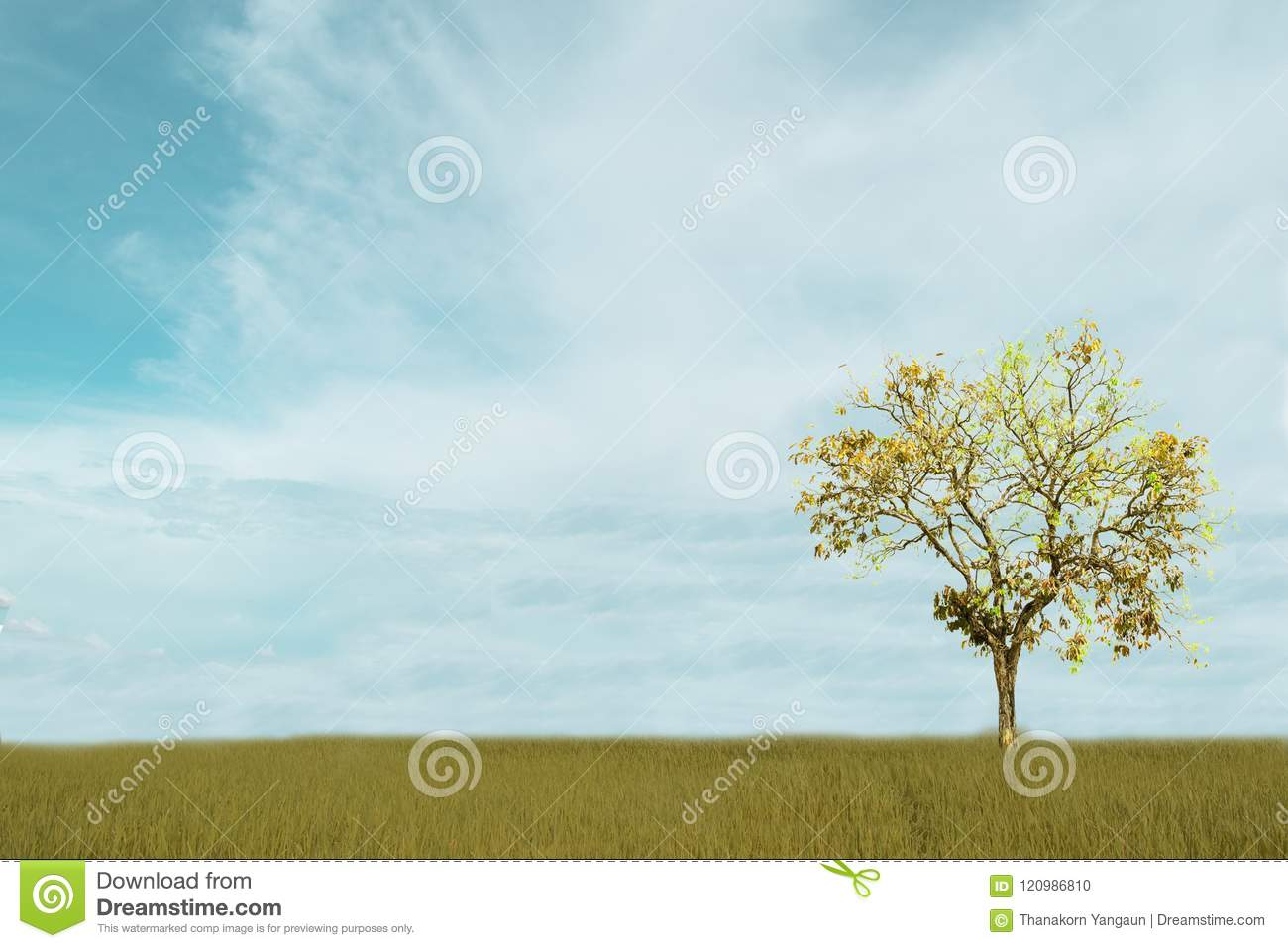 Beautiful white Cloudy and blue sky over tree isolated on green field background.