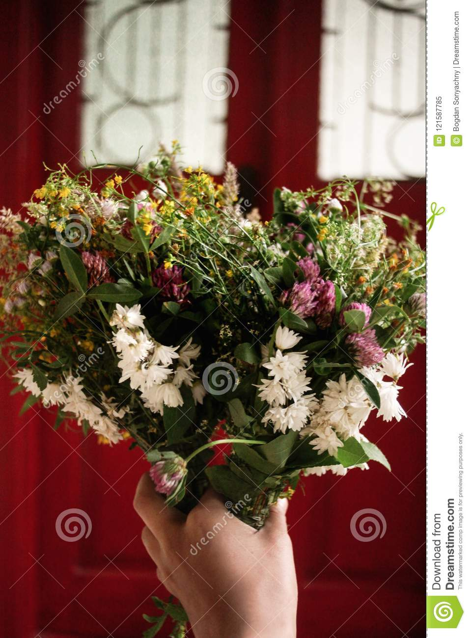 Beautiful White Flowers Bouquet In Hand At Rustic Wooden Red Do