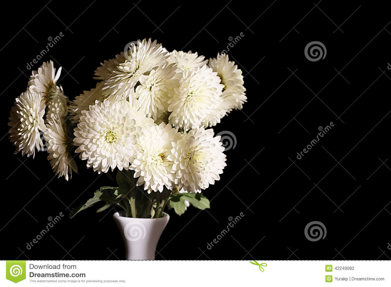 Beautiful White Flowers In Vase On The Black Background Stock Photo