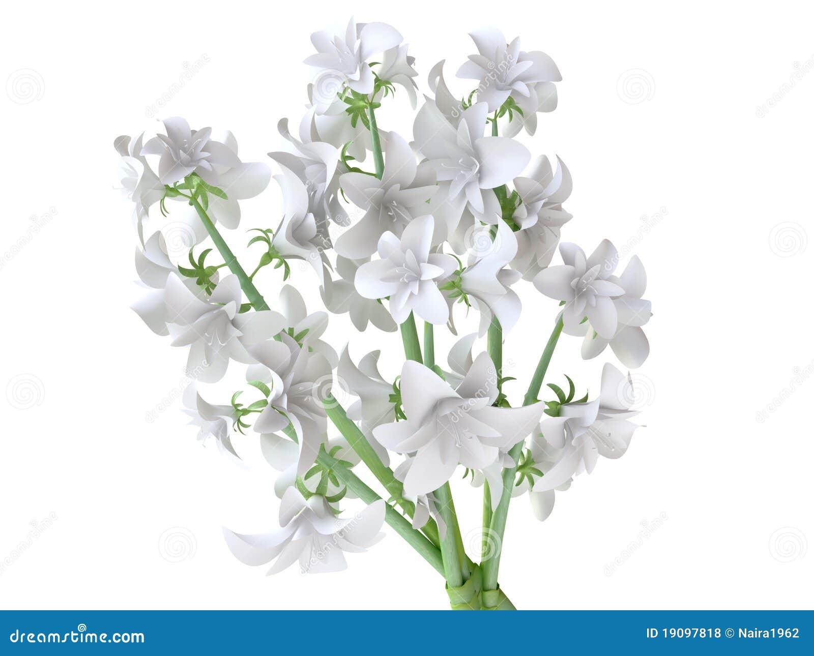 Beautiful white hyacinth bouquet royalty free stock photos image bouquet hyacinth white bud flower dhlflorist Choice Image