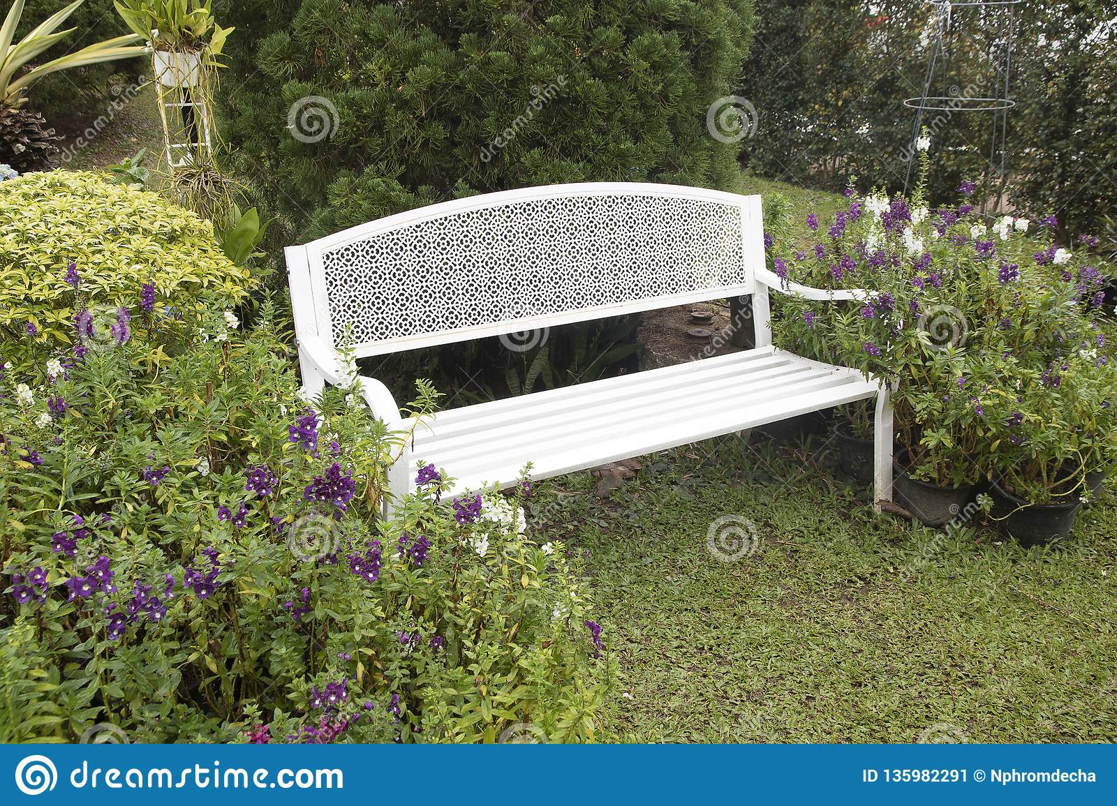 Magnificent Beautiful White Vintage Iron Bench In The Garden Stock Image Ncnpc Chair Design For Home Ncnpcorg
