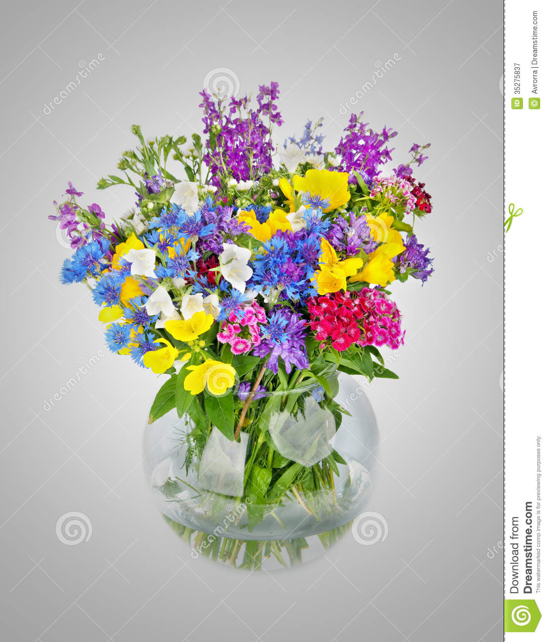 beautiful wild flowers bouquet in vase stock image image 35275837. Black Bedroom Furniture Sets. Home Design Ideas