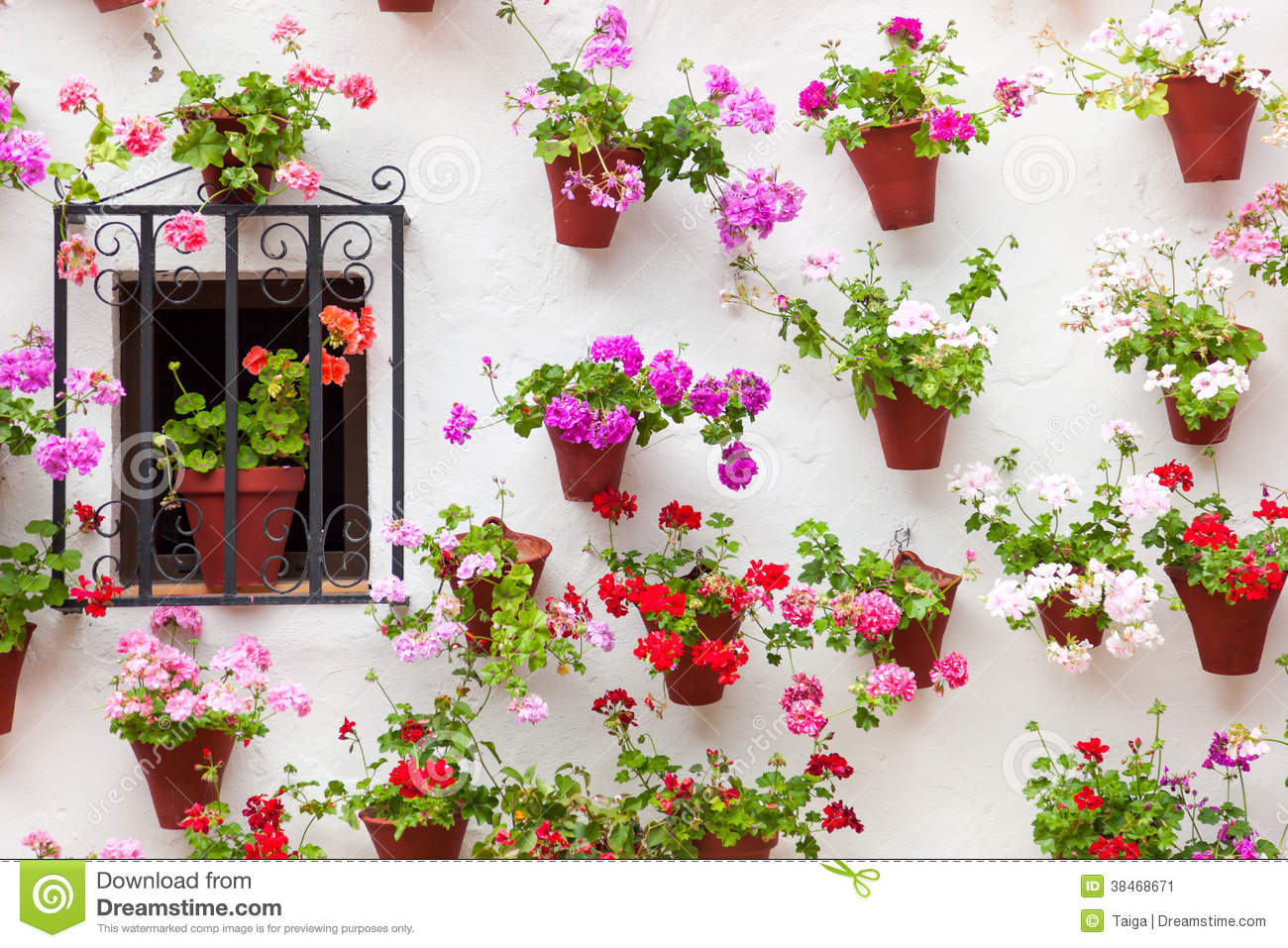 Beautiful Window And Wall Decorated Flowers - Old European ...