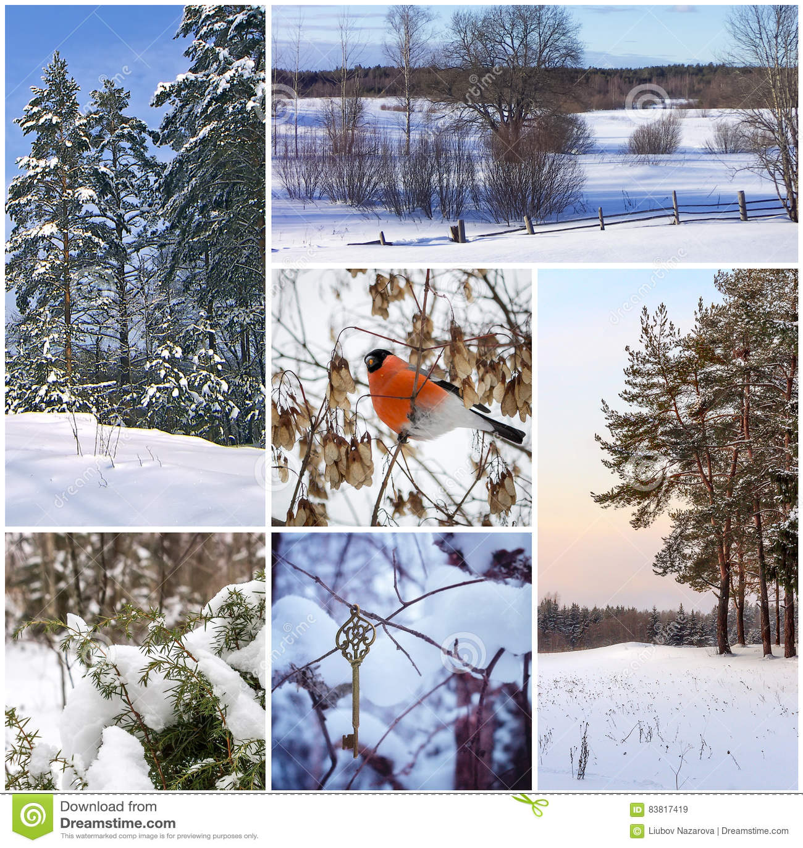 Beautiful winter collage