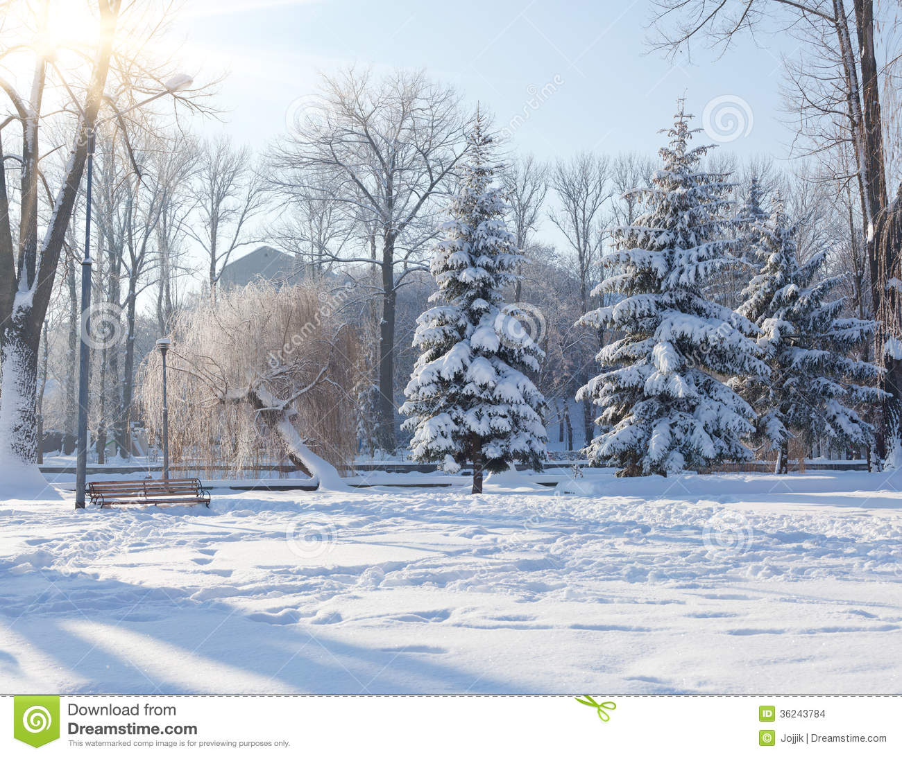 Beautiful Winter Landscape In City Park Stock Photo