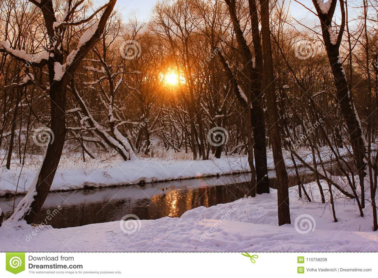 Beautiful Winter Landscape In The Forest With River At Sunset Time