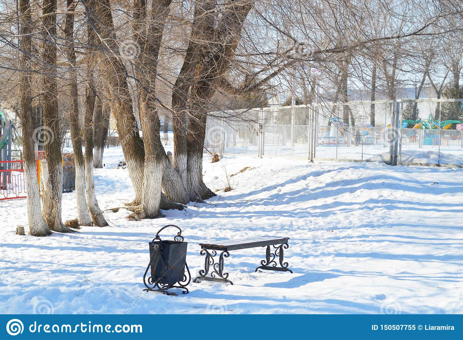Beautiful winter park. Trees and bench. Romantic atmosphere