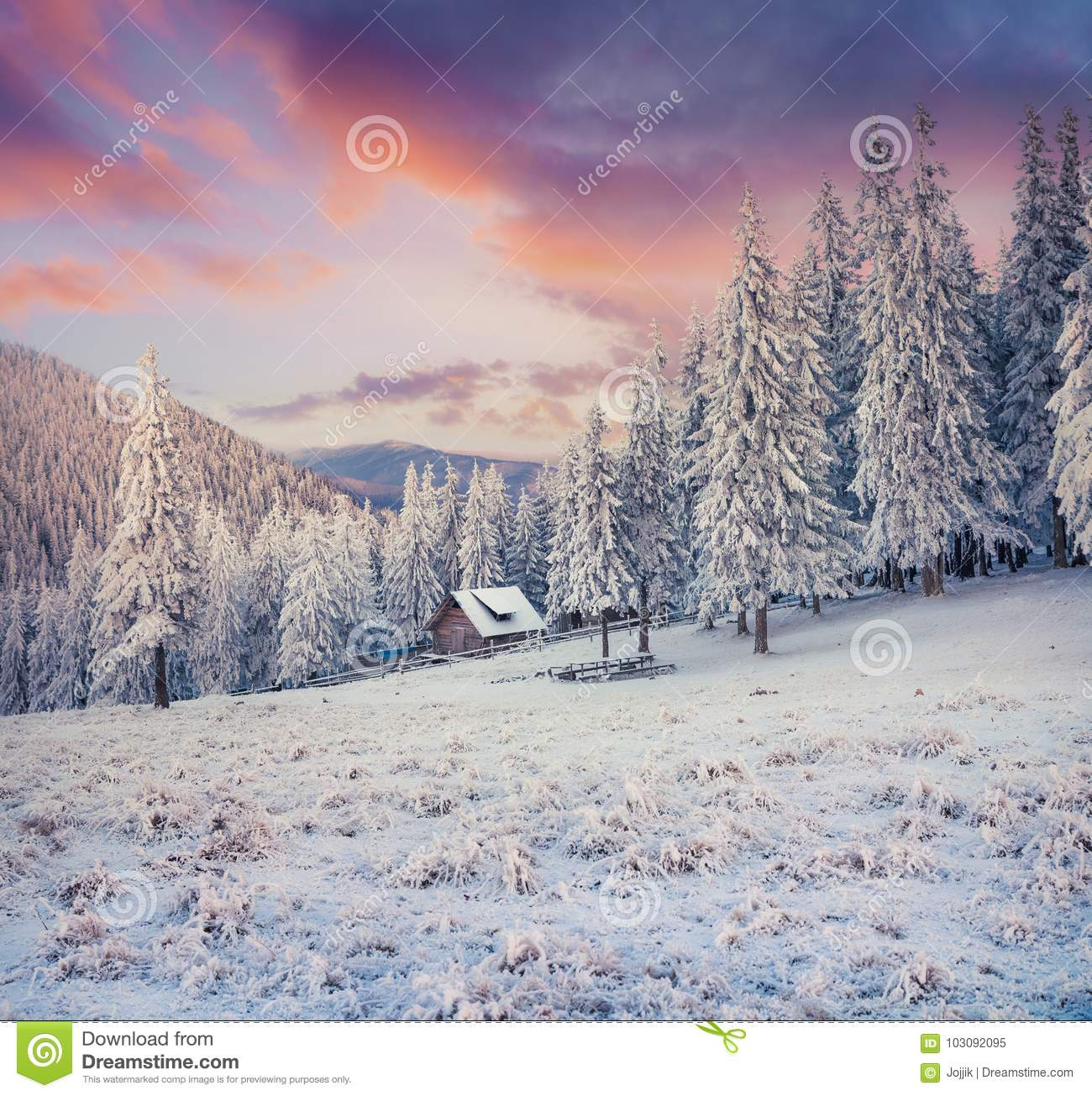 Beautiful Winter Sunrise In Carpathian Mountains With Snow Cower