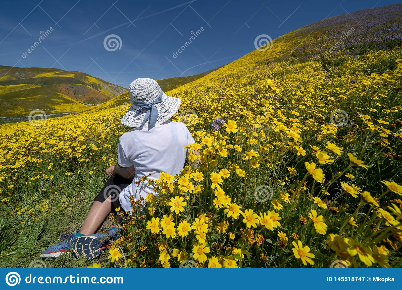 Beautiful woman with back facing camera, sitting in a field of yellow wildflowers. Concept for spring allergy season