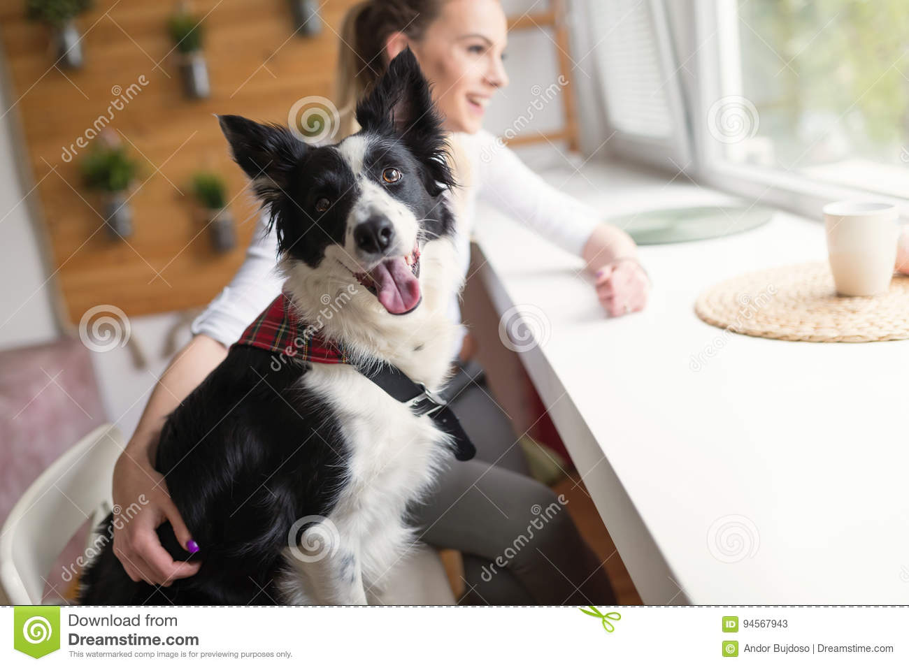 Beautiful woman and her best friend a happy dog