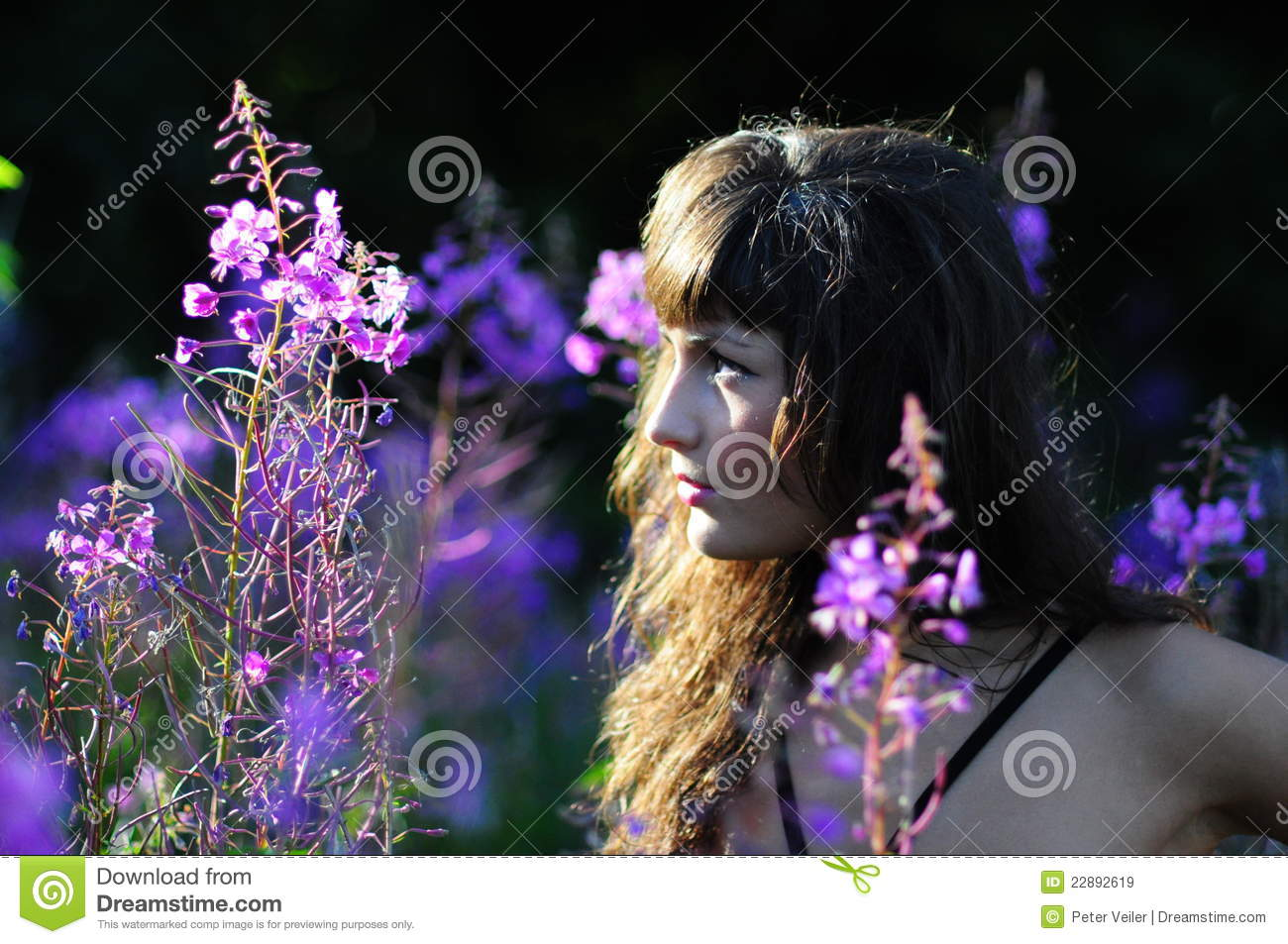 Beautiful Woman In Nature Profile Stock Image Image Of Woman Features 22892619