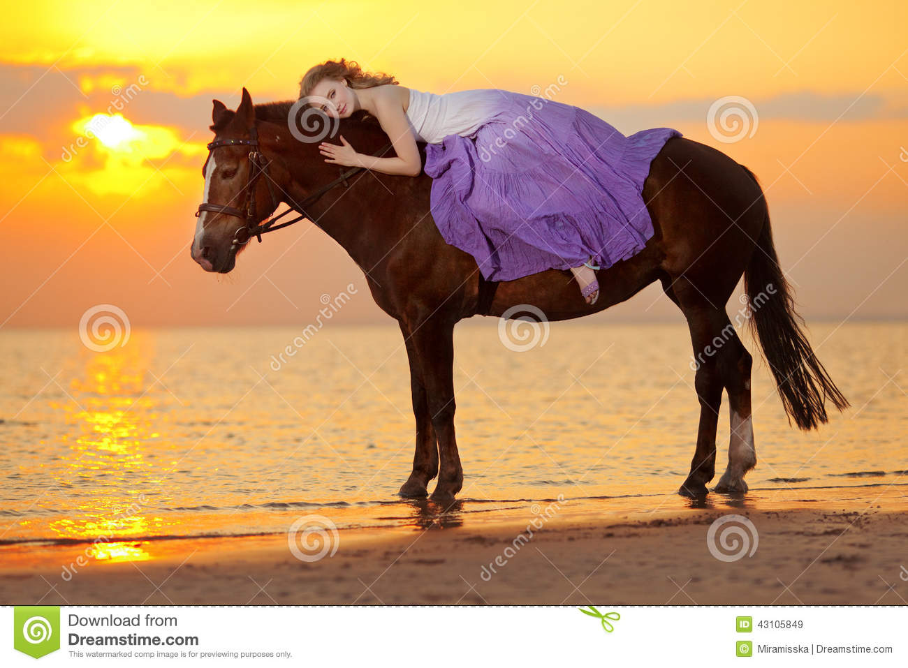 4 094 Woman Horse Sunset Photos Free Royalty Free Stock Photos From Dreamstime