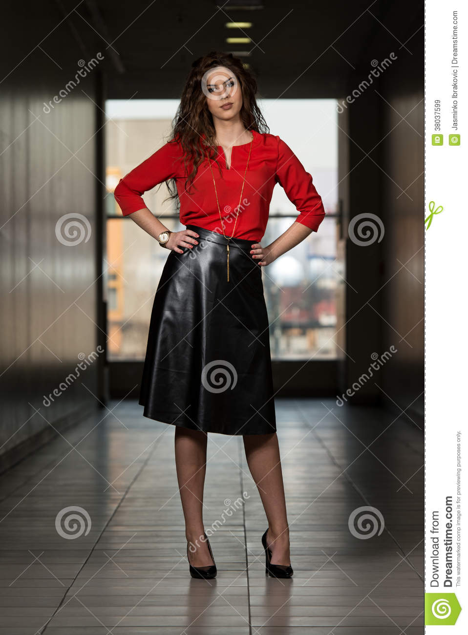 Ladies Wearing Leather Skirts - Dress Ala