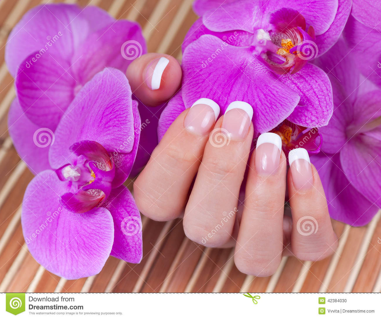 beautiful womans hands and nails with french manic stock manicure clipart free manicure clip art free