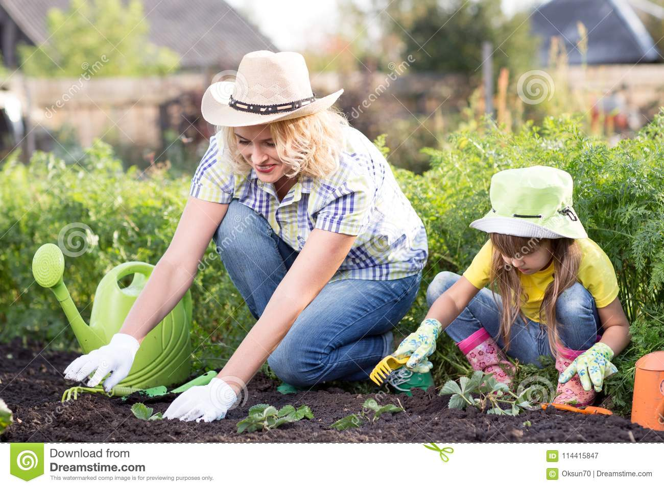 Beautiful woman and chid daughter planting seedlings in bed in domestic garden at summer day. Gardening activity with