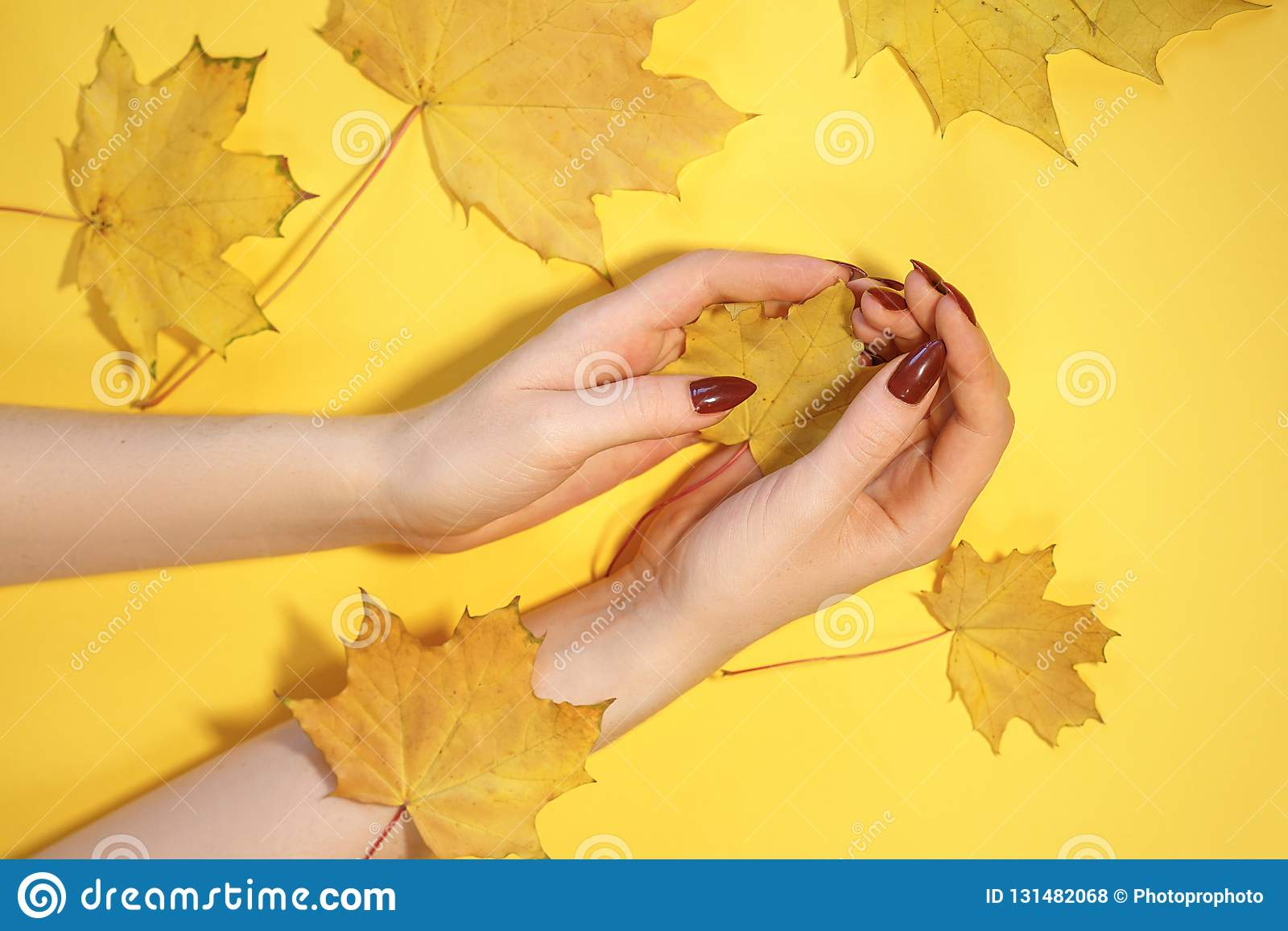 Beautiful women`s hands on paper yellow background, autumn hand care concept