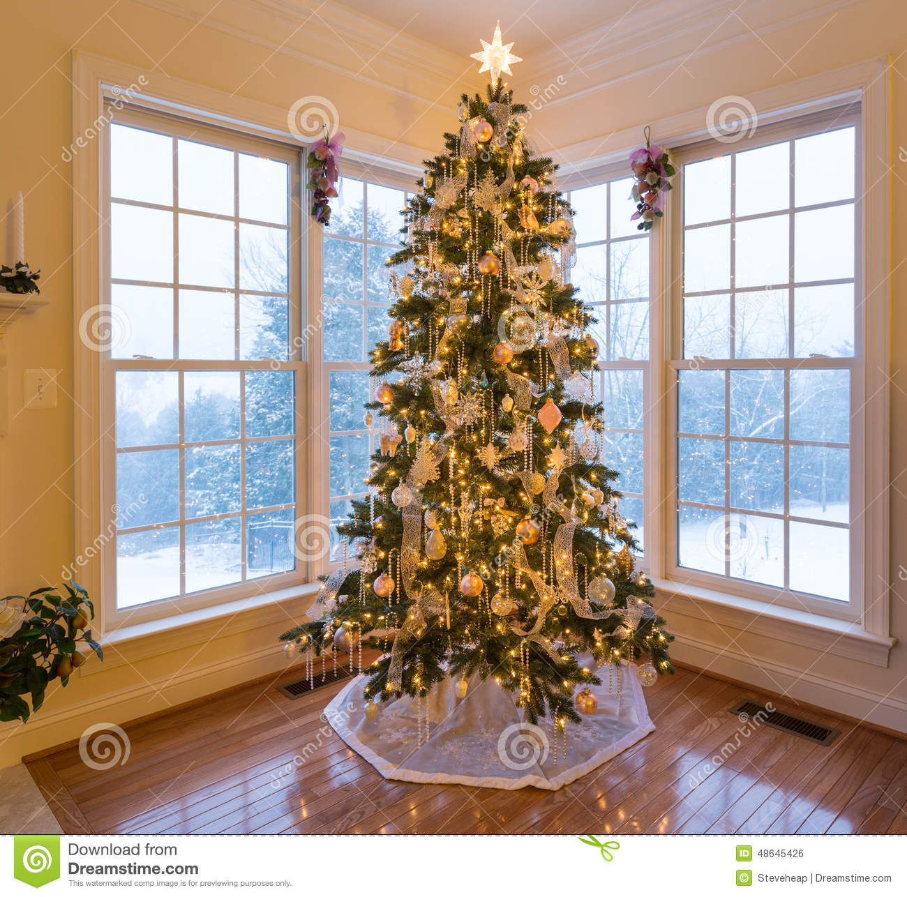 Beautiful xmas tree with snow outside stock photo image House beautiful christmas trees