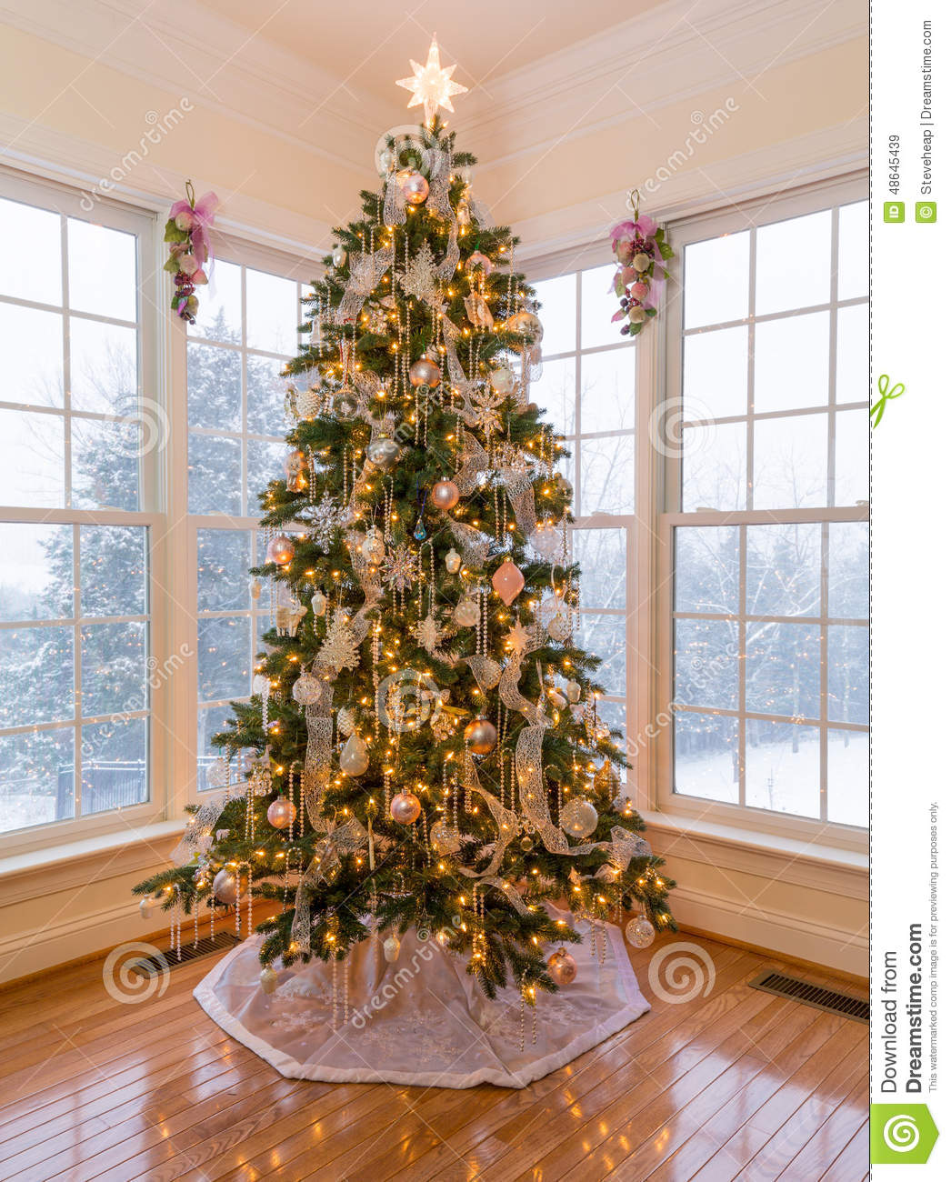 Beautiful Christmas Tree Pictures: Beautiful Xmas Tree With Snow Outside Stock Image