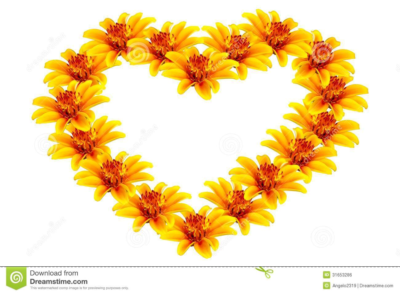 beautiful yellow flowers heart shaped flower isolated white background 31653286