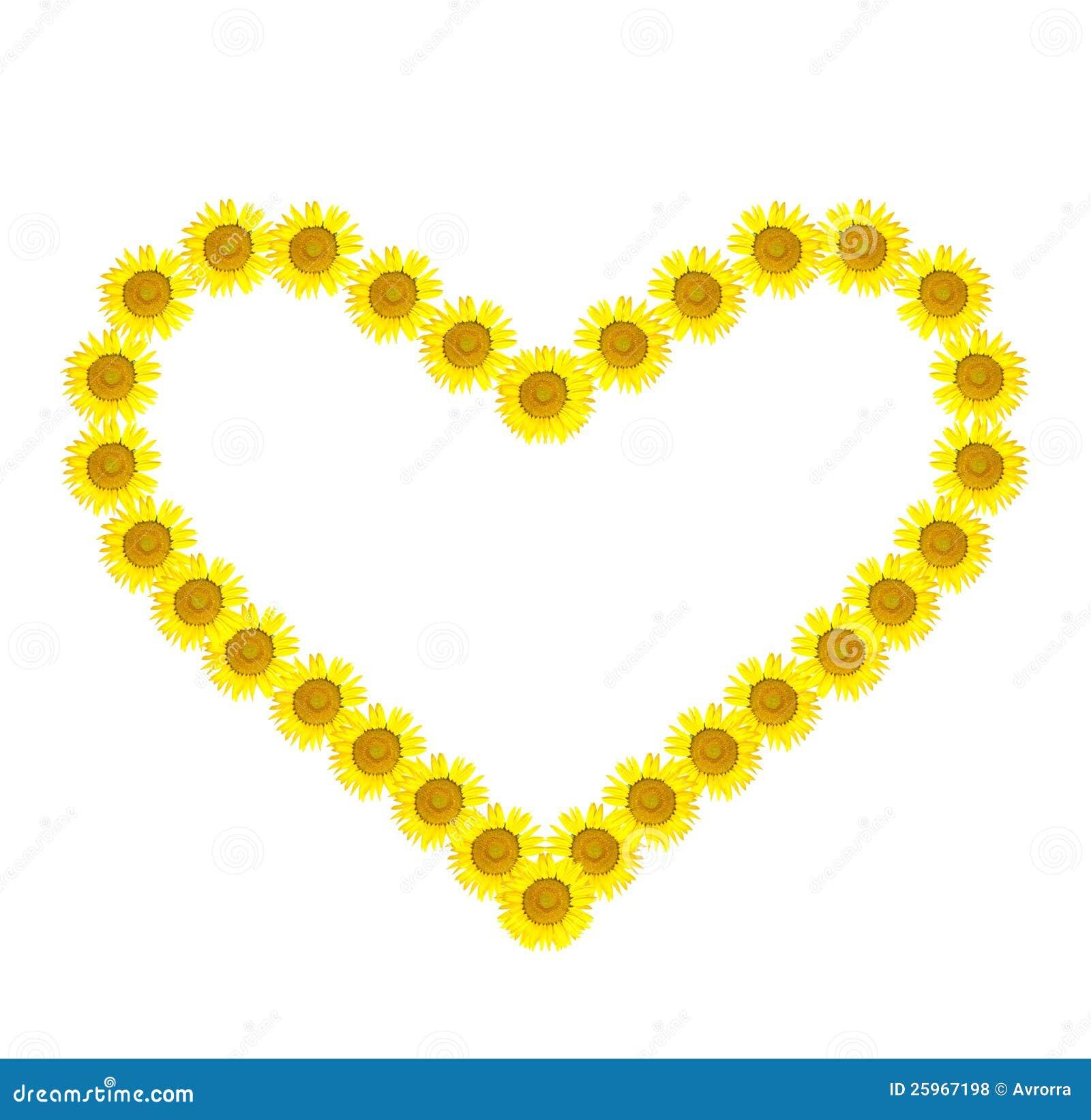 Beautiful Yellow Sunflower Heart Stock Photo - Image of ...