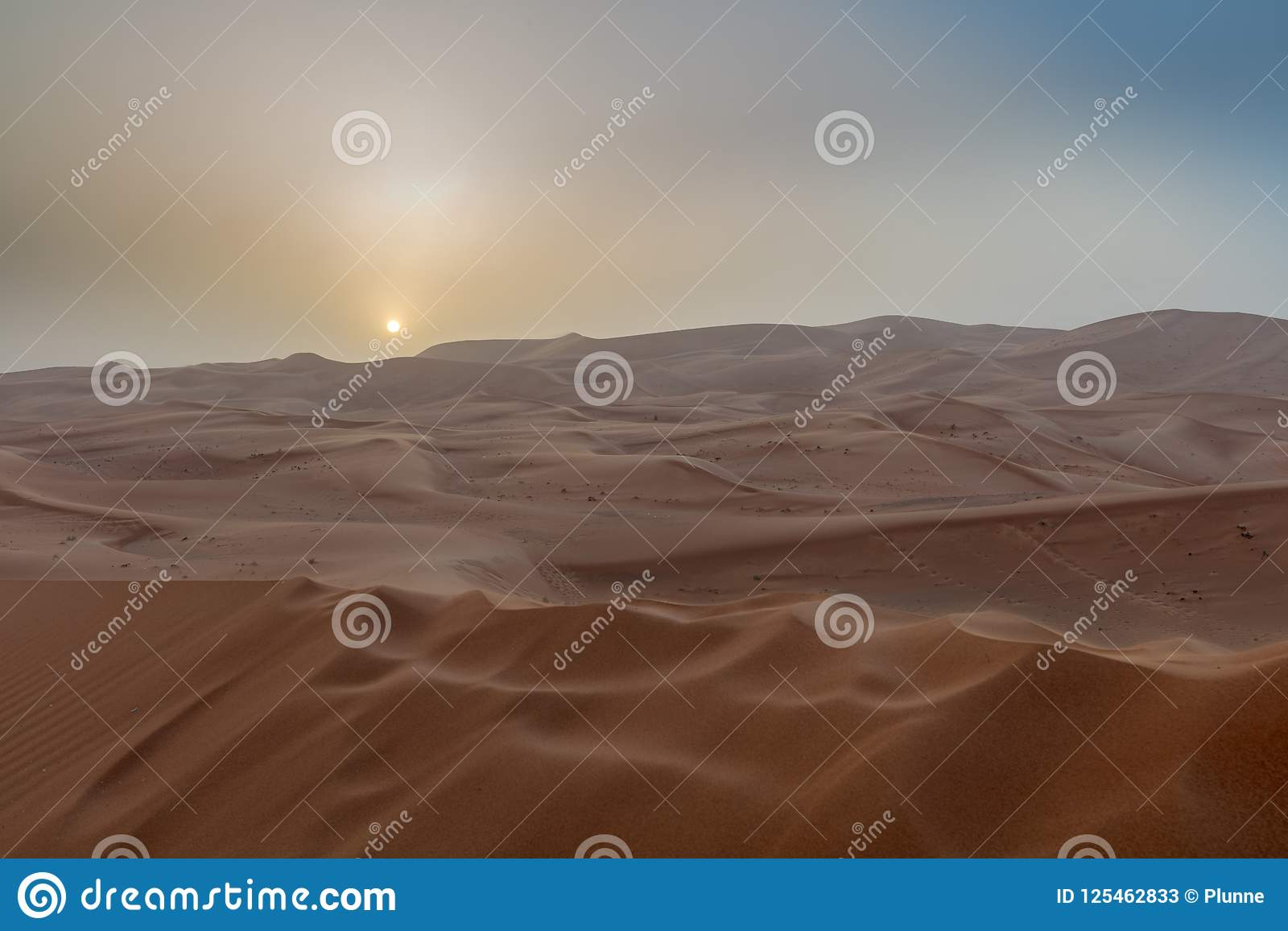 A beautiful yellow sunset in the desert.