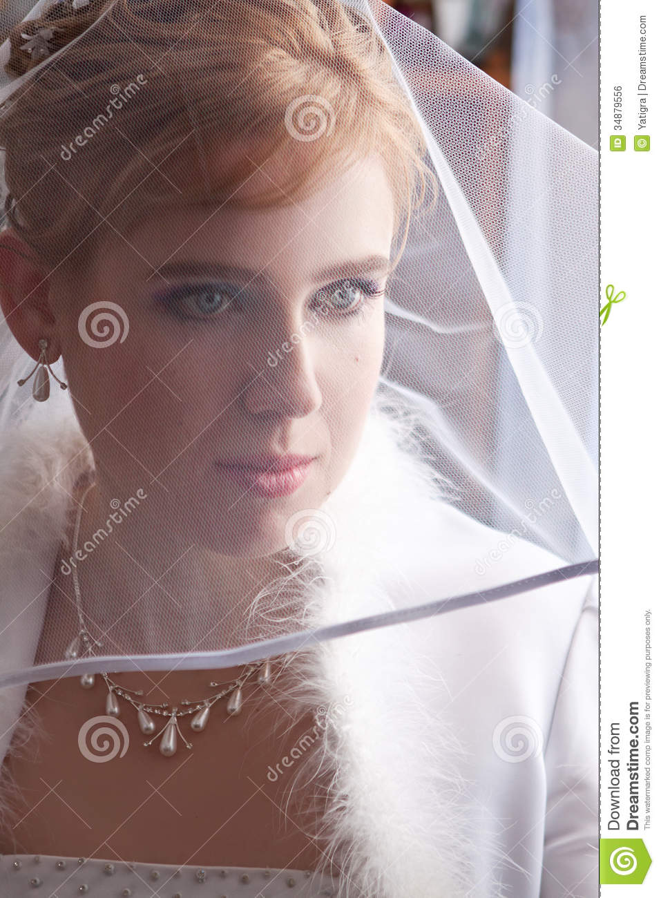 Beautiful Young Bride Royalty Free Stock Image Image