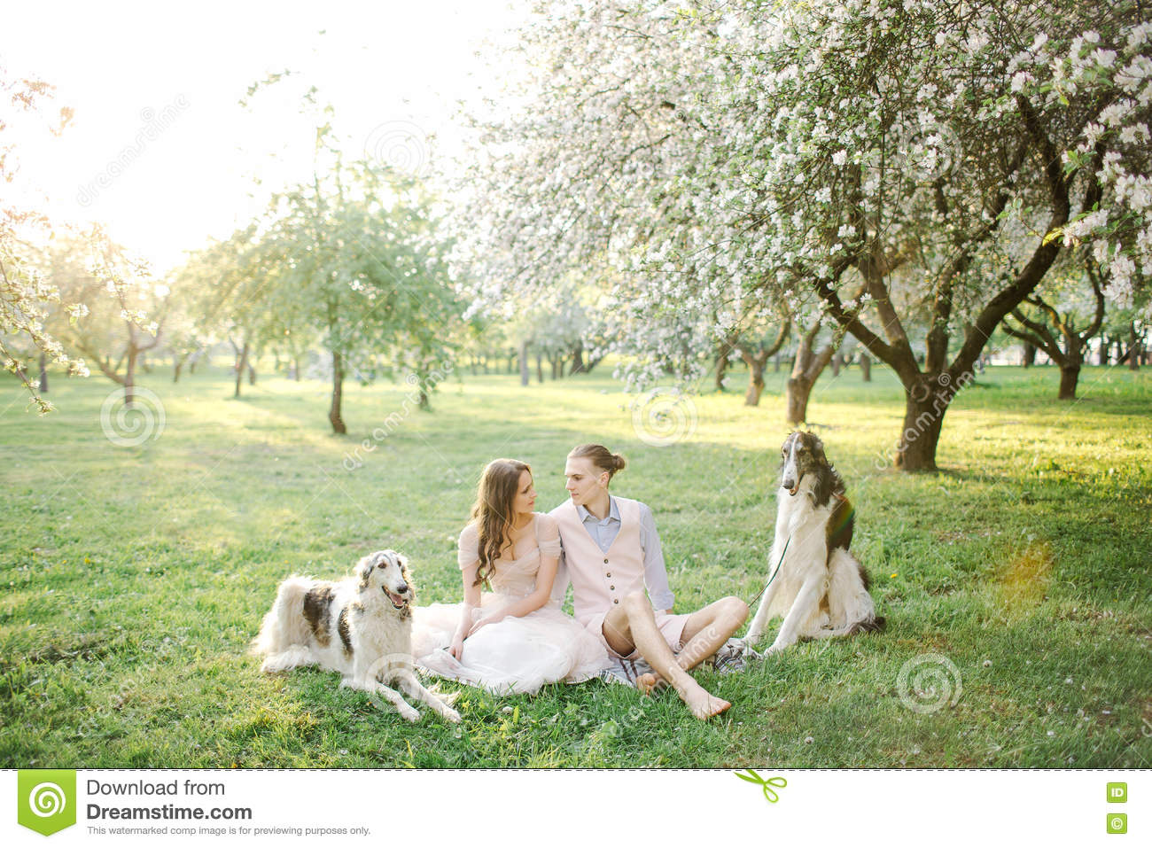 Beautiful young couple in wedding dress with greyhounds in park