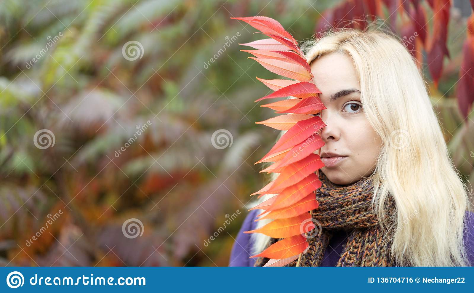 Half length portrait of young female in the autumn park with colorful leaves