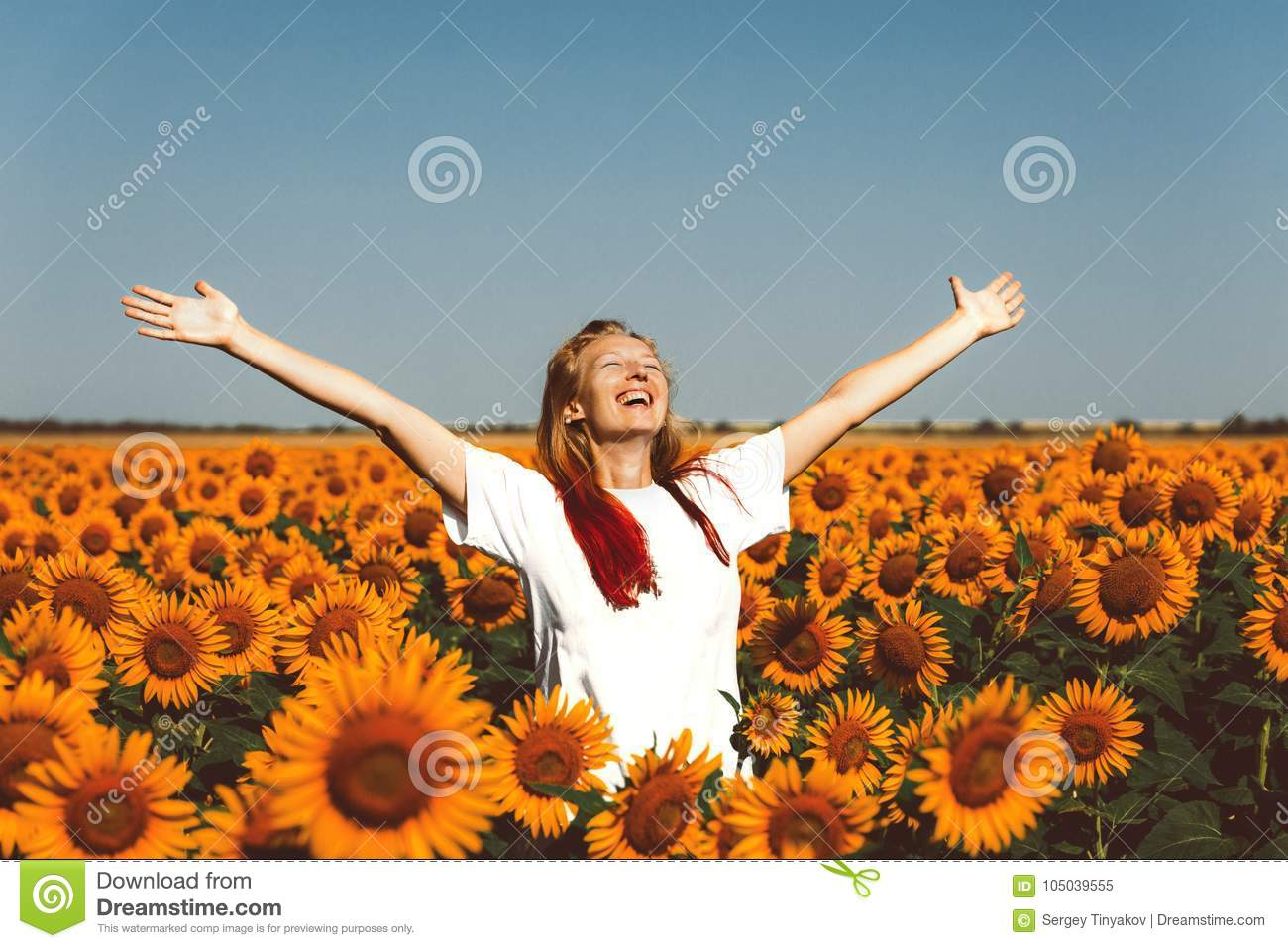 Young Women Standing In Sunflowers And Raising Hands Up. Freedom Lifestyle Outdoor Concept
