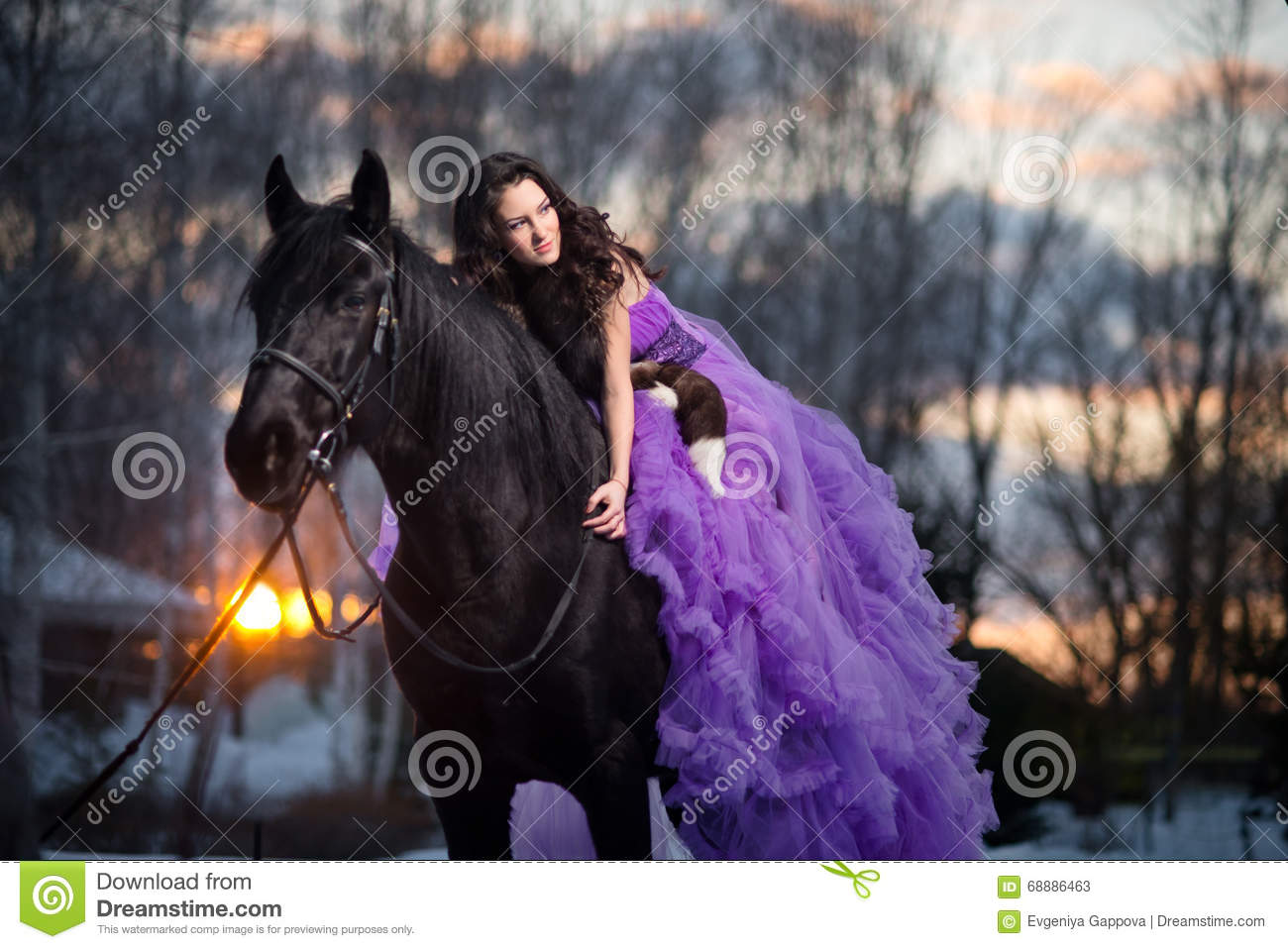 Beautiful Young Woman With A Black Horse Stock Image -3132