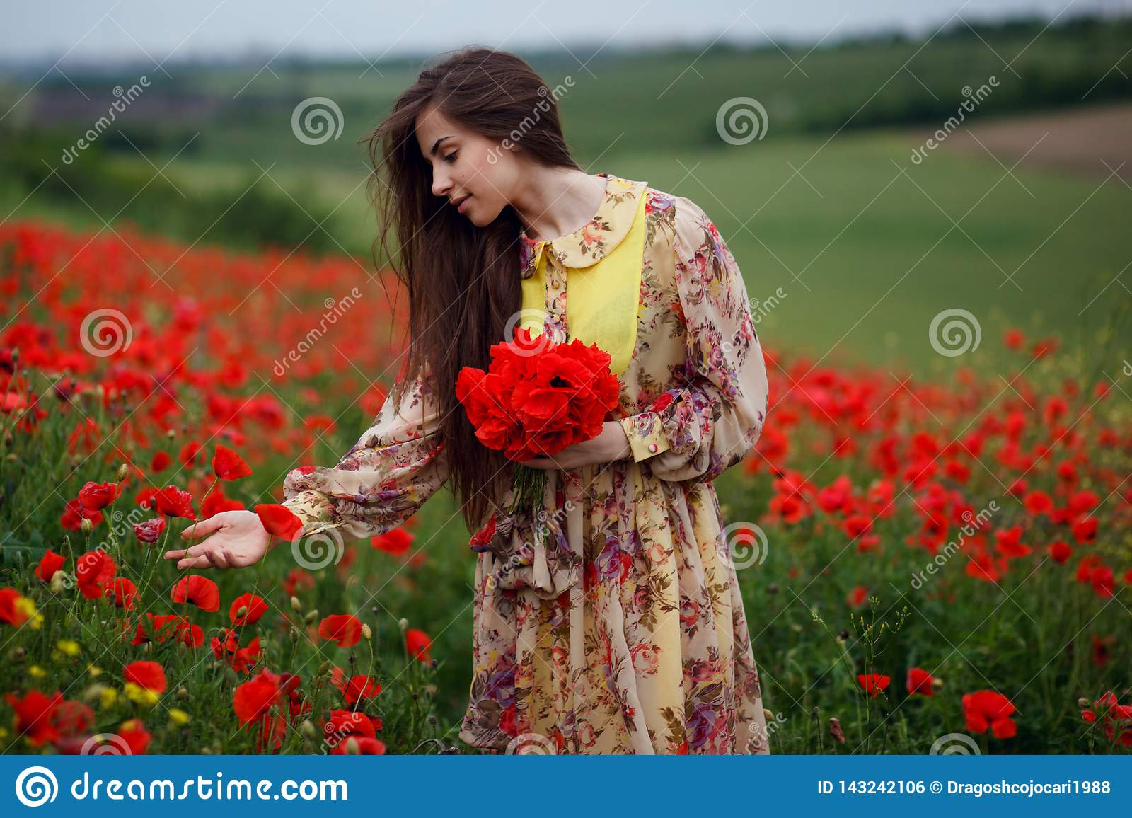 Profile of a beautiful young woman, long hair, standing in the red poppy flower field, beautiful landscape background