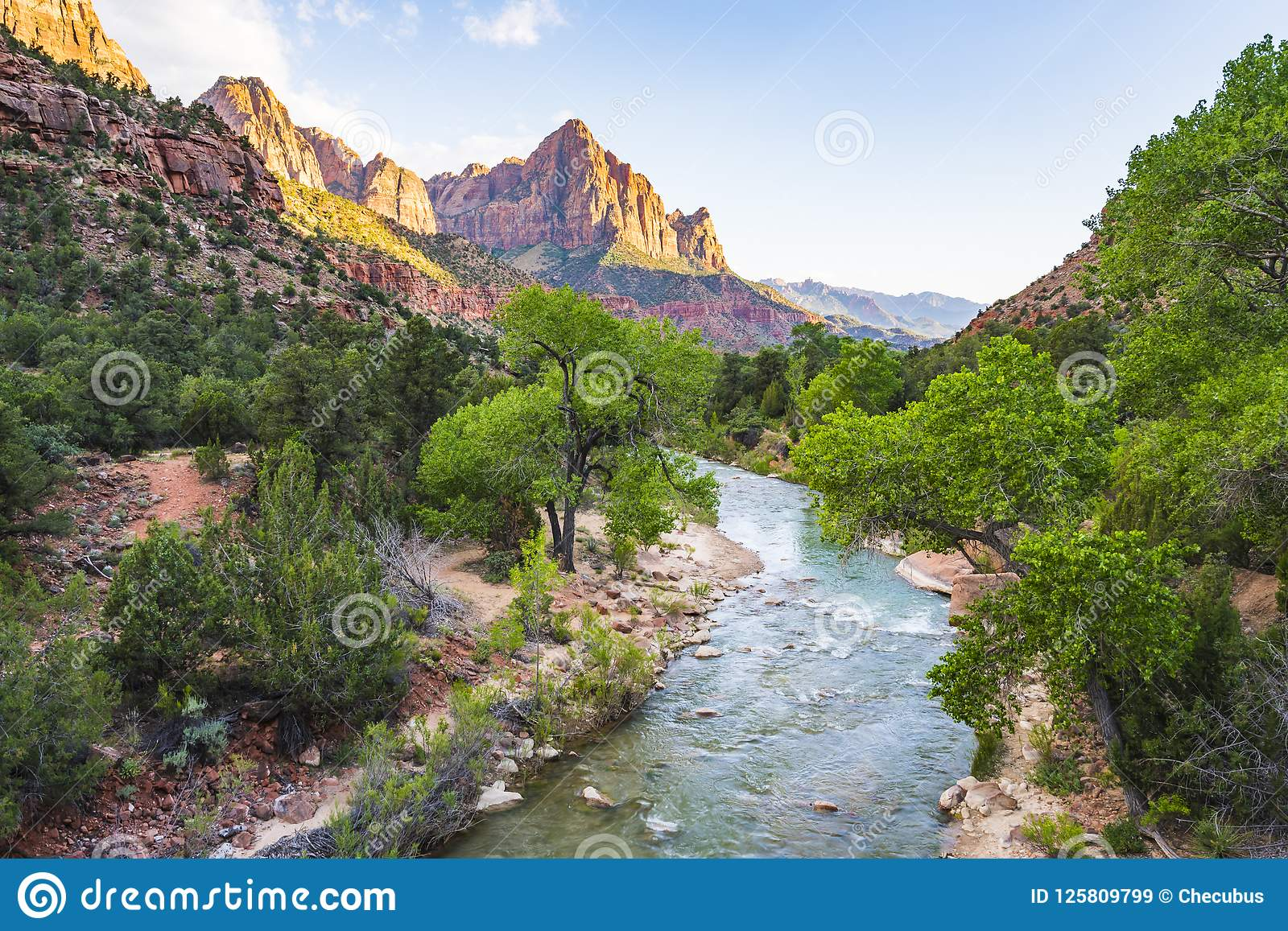 Pin by Aditya on Beautiful Places | Zion national park