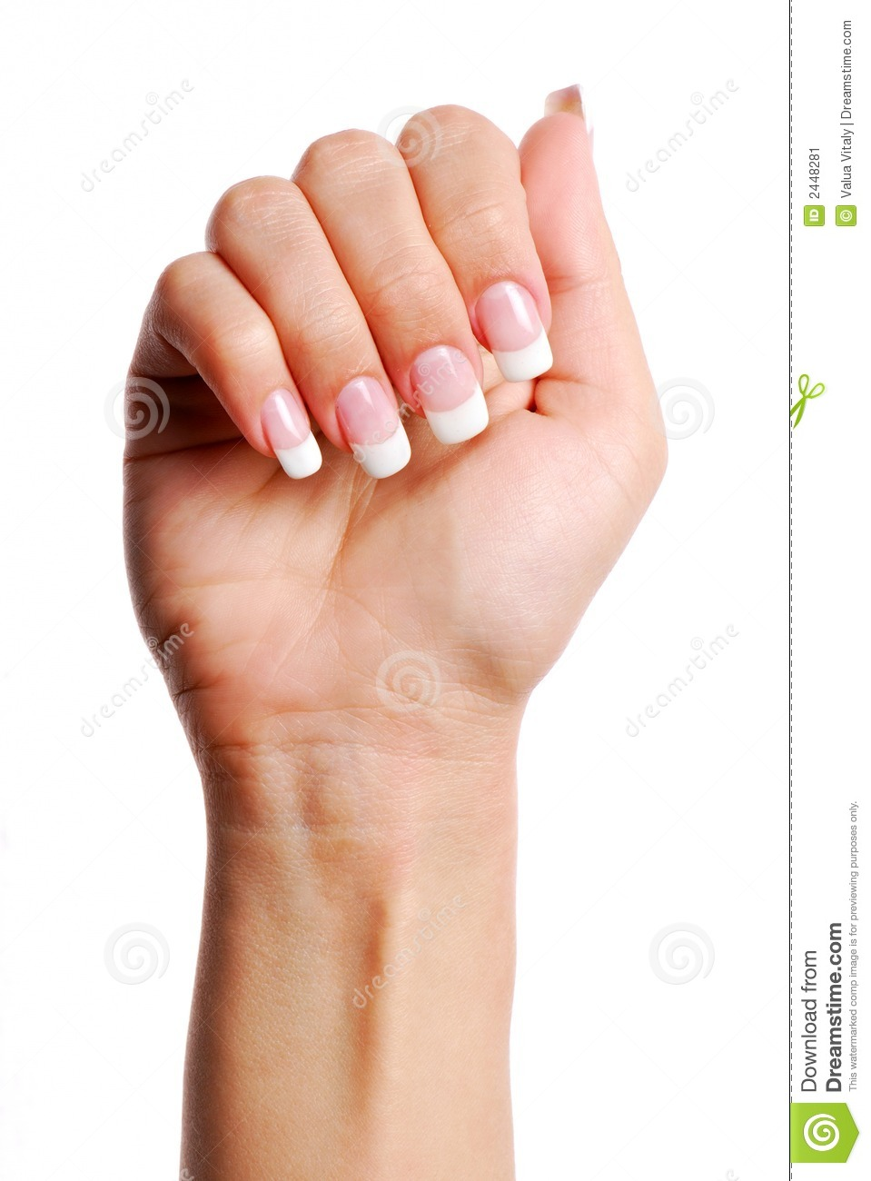 Beautifull Woman Hand. Stock Image - Image: 2448281