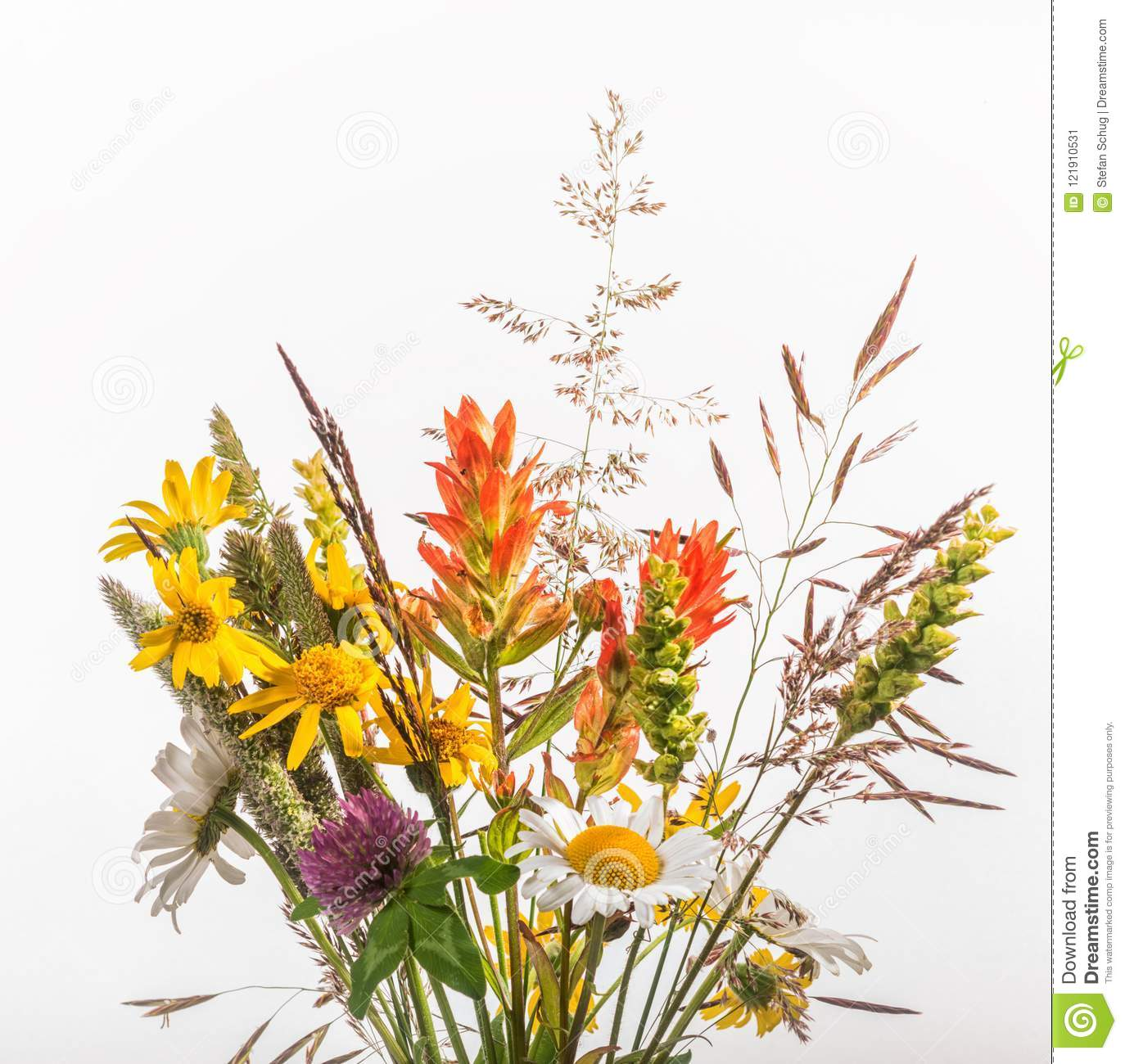 39 798 Wildflower Bouquet Photos Free Royalty Free Stock Photos From Dreamstime