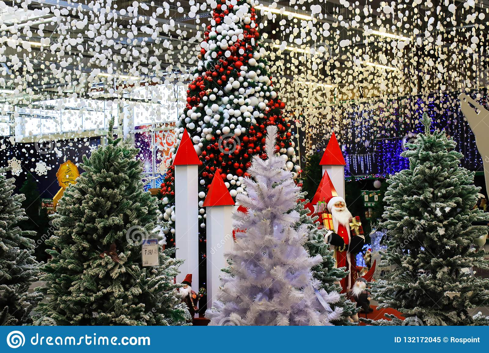 A beautifully decorated Christmas trees with red, white balls and garlands. Design and scenery, New Year s concept, winter holiday