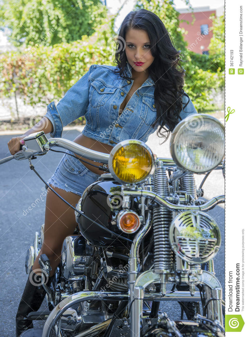 Harley Davidson Prices >> Beauty with bicycle stock image. Image of cute, harley ...