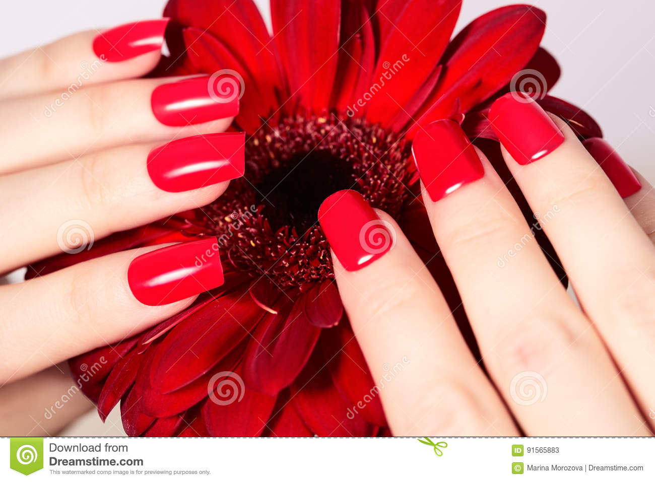 Beauty Hands With Red Fashion Manicure And Bright Flower Beautiful