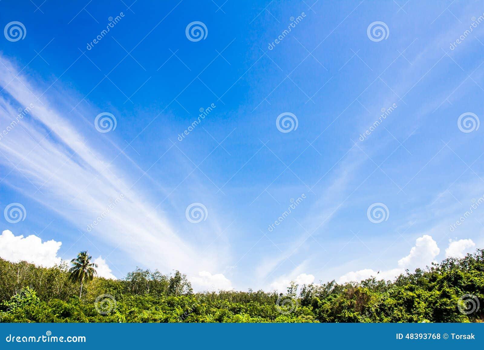 Beauty natural blue sky