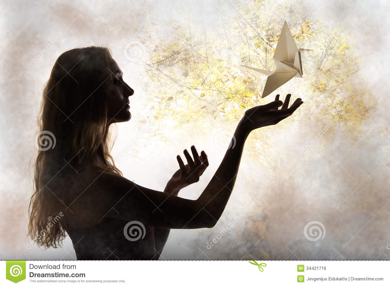 Beauty Woman Silhouette With Flying Paper Crane Stock ...