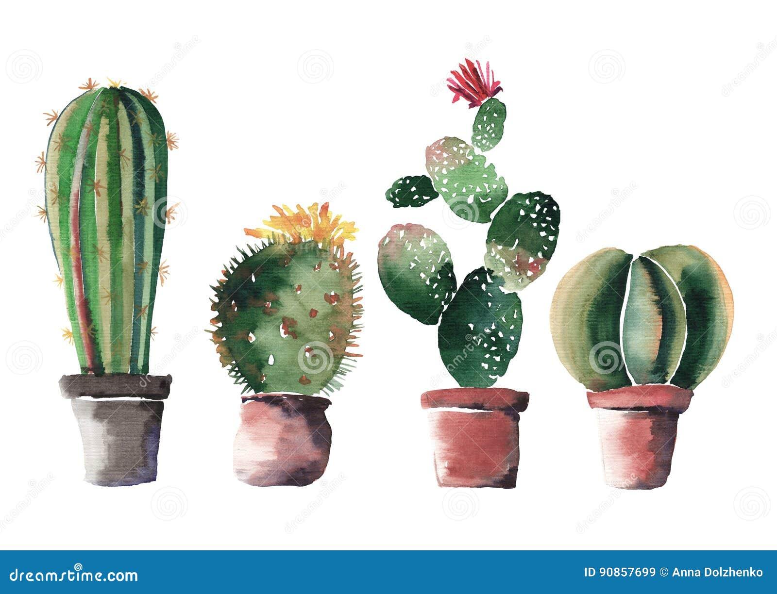 Beaux beaux cactus lumineux abstraits merveilleux graphiques mignons de l été quatre dans des pots d argile rouges et bruns avec