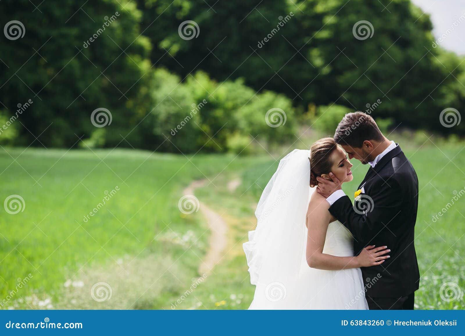beaux couples de mariage sur la nature photo stock image du mari caucasien 63843260. Black Bedroom Furniture Sets. Home Design Ideas