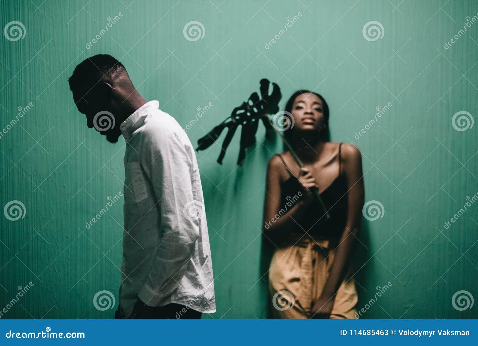 Beaux couples gais d afro-américain regardant l un l autre